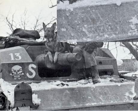 13-StuGIII192StugAbt13-3ks